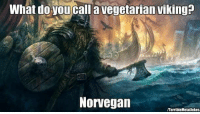 What do you call a vegetarian viking?  Norvegan  /Torrible Metal Jokes