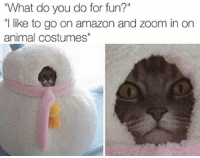 "Amazon, Memes, and Zoom: ""What do you do for fun?""  ""I like to go on amazon and Zoom in on  animal costumes"" Follow my other accounts @x__antisocial_butterfly__x @lola_the_ladypug ❤️"