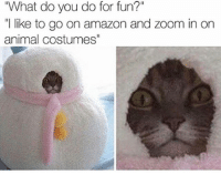 "Amazon, Memes, and Zoom: ""What do you do for fun?""  ""l like to go on amazon and zoom in on  animal costumes"" Is that a cat? No it's a snowman ⛄️❄️"