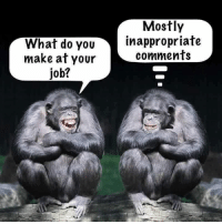 So do we!!: What do YOU  make at your  job?  Mostly  inappropriate  comments So do we!!