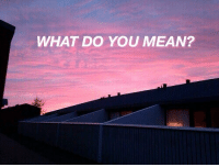 Mean, You, and What: WHAT DO YOU MEAN?