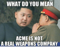 Hahaha!!: WHAT DO YOU MEAN  ACME IS NOT  A REAL WEAPONS COMPANY Hahaha!!