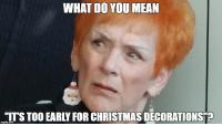 Too soon for Christmas?!: WHAT DO YOU MEAN  ITS TOO EARLY FOR CHRISTMAS DECORATIONSTEO Too soon for Christmas?!