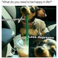 """Life, Happy, and Girl Memes: """"What do you need to be happy in life?""""  more espresSO  Less depresso Listen to the little woofer 🤗 ( @girlsthinkimfunny )"""