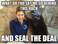 Will Ferrell Memes   Finn The Fucking Human: WHAT DO YOU SAY WE GO BEHIND  THIS ROCK  AND SEAL THE DEAL  uickmeme com Will Ferrell Memes   Finn The Fucking Human