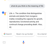 A good definition of life by Google: what do you think is the meaning of life  Life. n. The condition that distinguishes  animals and plants from inorganic  matter, including the capacity for growth,  reproduction, functional activity, and  continual change preceding death. Also,  42.  G Search  Beam me up Scotty!  Do a barrel  Ss A good definition of life by Google
