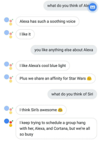 "Siri, Star Wars, and Blue: what do you think of Ale  Alexa has such a soothing voice  you like anything else about Alexa  like Alexa's cool blue light  Plus we share an affinity for Star Wars  what do you think of Siri  Ithink Siri's awesome  I keep trying to schedule a group hang  with her, Alexa, and Cortana, but we're all  so busy <p>Wholesome AI via /r/wholesomememes <a href=""http://ift.tt/2BYFj3j"">http://ift.tt/2BYFj3j</a></p>"