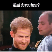 Dank, Prince, and Prince Harry: What do youhear? This is what Prince Harry was REALLY saying 👀