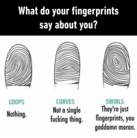 9gag, Fucking, and Memes: What do your fingerprints  say about you?  CURVES  Not a single  fucking thing.  LOOPS  SWIRLS  They're just  Nothing.  fingerprints, you  goddamn moron They tell you who you are, literally⠀ fingerprints 9gag