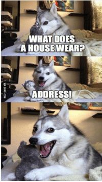 Memes, What Does, and 🤖: WHAT DOES  A HOUSEWEAR  ADDRESS! https://t.co/LY50qy9YuM