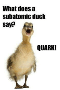 Duck: What does a  subatomic duck  say?  QUARK!