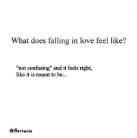 "from @horracio: What does falling in love feel like?  ""not confusing"" and it feels right,  like it is meant to be...  Horracio from @horracio"