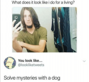Lel just found this crystal on twitter: What does it look like i do for a living?  You look like...  @lookliketweets  Solve mysteries with a dog Lel just found this crystal on twitter