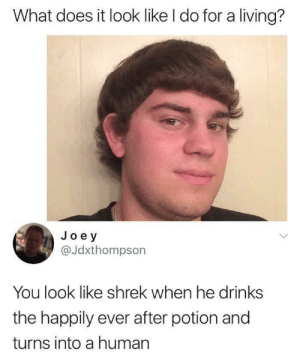 Dank, Memes, and Reddit: What does it look like I do for a living?  Joey  @Jdxthompson  You look like shrek when he drinks  the happily ever after potion and  turns into a human Really on point! by Imakillaholic FOLLOW 4 MORE MEMES.