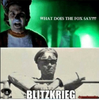- Grunge: WHAT DOES THE FOX SAY  BLITZKRIEG - Grunge