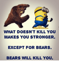 Memes, 🤖, and Bearing: WHAT DOESN'T KILL YOU  MAKES YOU STRONGER.  EXCEPT FOR BEARS.  BEARS WILL KILL YOU. 😂