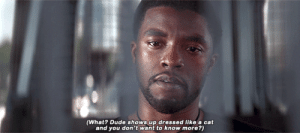 Dude, Roast, and Target: (What? Dude shows up dressed like a cat  and you don't want to know more?) pearwaldorf: marveladdicts: Sam Wilson asking T'challa the important question. #tchalla flashing back to shuri's 20 minute roast about his fursona(americachavez)