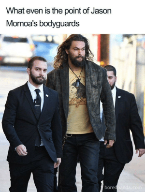 Level 1 crook level 35 boss: What even is the point of Jason  Momoa's bodyguards  borec Level 1 crook level 35 boss