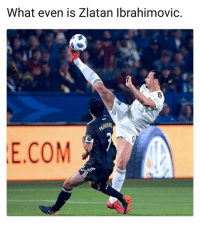 Memes, Zlatan Ibrahimovic, and 🤖: What even is Zlatan Ibrahimovic.  WHUR  E.COM Taking it out of the air, Zlatan style! 😂👊⚽️ Ibra DareToZlatan LA Galaxy