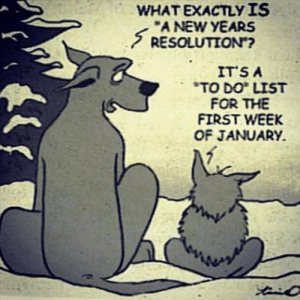 """CORRECT https://t.co/RXc796mMqk: WHAT EXACTLУ IS  """"A NEW YEARS  S RESOLUTION""""?  IT'S A  *TO DO LIST  FOR THE  FIRST WEEK  OF JANUARY. CORRECT https://t.co/RXc796mMqk"""