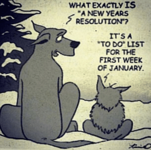"""*Sigh: WHAT EXACTLY IS  """"A NEW YEARS  S RESOLUTION?  IT'S A  """"TO DO LIST  FOR THE  FIRST WEEK  OF JANUARY. *Sigh"""