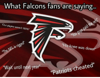 "Memes, 🤖, and Falcone: What Falcons fans are saying  ""Our players weren't 100%""  P 12U  ""His knee was down""  ""Patriots cheated""  ""Wait until next year 100% Accurate PatsNation"