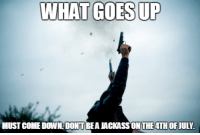 """Guns, Independence Day, and Tumblr: WHAT GOES UP  MUST COME DOWNDONT BEA JACKASS ON THE4TH OFJULY <p><a href=""""http://cerebralzero.tumblr.com/post/90569795397/have-a-safe-and-happy-independence-day-and"""" class=""""tumblr_blog"""">cerebralzero</a>:</p>  <blockquote><p>Have a safe and happy independence day and remember :</p> <ul><li>don't shoot guns into the air because at the correct trajectory a bullet can travel for miles(depending on caliber) and still carry lethal force.</li> </ul></blockquote>"""