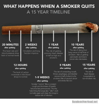 ♤♤♤♤♤: WHAT HAPPENS WHEN A SMOKER QUITS  A 15 YEAR TIMELINE  20 MINUTES  2 WEEKS  1 YEAR  10 YEARS  after quitting  after quitting  after quitting  after quitting  The risk of  dying from  The heart rate and Circulation and lung The risk of getting  blood pressure drop function improve. coronary heart disease  lung cancer is half that of  back to normal levels  is half as high as a  smokers. Risk of getting  pancreatic and larynx  cancer also decreases.  12 HOURS  15 YEARS  5 YEARS  after quitting  after quitting  after quitting  The risk of contracting mouth,  The risk of  The level of carbon  throat, esophagus, and bladder  heart disease  monoxide in the blood  cancers is half of what it is for is equivalent to  to normal.  drops 1-9 WEEKS  smokers Rsk of cervical cancer  and stroke fall, too.  after quitting  Smoker norms ake a constant  cough and shortnessof breath)  become loss pronounced The tiny  hairs hiring thelungs(aka dla work  normally again and dean the lungs to  reduce risk of infection.  Random Overload.net ♤♤♤♤♤