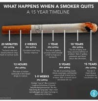 didyouknow educateyourself cigarettes tobbaco nicotine cancersticks freeyourmind freethesoul anons anon_info anonymous anonymiss repost: WHAT HAPPENS WHEN A SMOKER QUITS  A 15 YEAR TIMELINE  1 YEAR  20 MINUTES  2 WEEKS  10 YEARS  after quitting  after quitting  after quitting  after quitting  The heart rate and  Circulation and lung The risk of getting  The risk of dying from  blood pressure  drop  function improve.  coronary heart disease  lung cancer ishalf that of  smokers Risk of getting  loves.  back to normal  is half as high as a  pancreatic and larynx  smokers.  Cancer also decreases  15 YEARS  12 HOURS  5 YEARS  after quitting  after quitting  after quitting  The risk of  Tho risk of contractingmouth,  The level of carbon  and badder  heart disease  monoxide in tho blood  cancers is half of what itisfor  drops to normal  1-9 WEEKS  smokers. Risk of cervical cancer  non-smokers' risk  and stroke fal too.  aftor quitting  Smoker Moorms ake aconstant  cough and shortnessof breath)  becomokesspronounced The tiny  harslining the Kaka cita )work  nommally again and dean the lungsto  reduce risk of infection. didyouknow educateyourself cigarettes tobbaco nicotine cancersticks freeyourmind freethesoul anons anon_info anonymous anonymiss repost