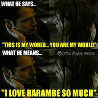 "Love, Meme, and Memes: WHAT HE SAYS...  ""THIS IS MY WORLD... YOU ARE MY WORLD  WHAT HE MEANS... Sjustics loague.memes  ""I LOVE HARAMBE SO MUCH Dropping a Harambe meme spam in 3... 2... 1... -Nightwing"