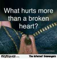 Funny, Heart, and Pictures: What hurts more  than a broken  heart?  The intemet Scavengers <p>Daily funny pictures  Quality lolz coming up  PMSLweb </p>