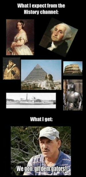 History channel: What I expect from the  History channel:  What I get: History channel