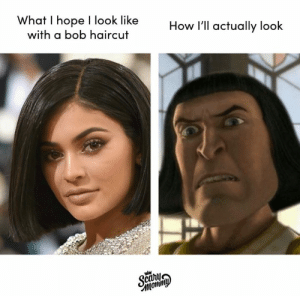 Dank, Haircut, and Hope: What I hope I look like  with a bob haircut  How I'll actually look  Scany Why is it so tempting though? 😩