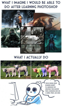 what i actually do: WHAT I IMAGINE I WOULD BE ABLE TO  DO AFTER LEARNING PHOTOSHOP  WHAT I ACTUALLY DO  。。OA THIS IS SOME GOOD  RAINBOW SHEEP!  M AWESOME FOR  CREATING THIS MASTER  PIECE, SOMEONE GIVE ME  A NOBEL PRIZE. LIKE NOW