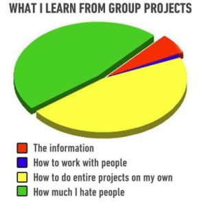 Work, How To, and Information: WHAT I LEARN FROM GROUP PROJECTS  The information  How to work with people  How to do entire projects on my own  How much I hate people Literally my uni group project