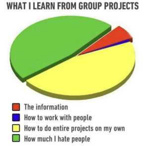 Work, How To, and Information: WHAT I LEARN FROM GROUP PROJECTS  The information  How to work with people  How to do entire projects on my own  How much I hate people Happens every time
