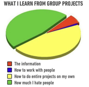 Work, How To, and Information: WHAT I LEARN FROM GROUP PROJECTS  The information  How to work with people  How to do entire projects on my own  How much I hate people meirl
