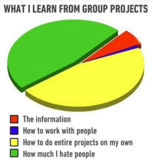 Work, How To, and Information: WHAT I LEARN FROM GROUP PROJECTS  The information  How to work with people  How to do entire projects on my own  How much I hate people Let's be honest..
