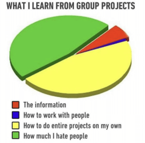 Work, How To, and Information: WHAT I LEARN FROM GROUP PROJECTS  The information  How to work with people  How to do entire projects on my own  How much I hate people