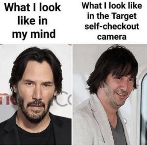 In My Mind: What I look like  in the Target  self-checkout  What I look  like in  my mind  camera
