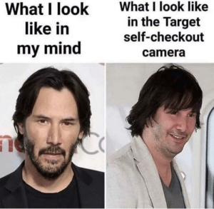 meirl: What I look like  in the Target  What I look  like in  self-checkout  my mind  camera meirl