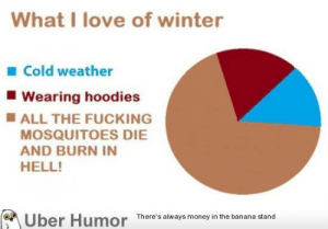 Ahh winter, how i love you.http://meme-rage.tumblr.com: What I love of winter  1 Cold weather  Wearing hoodies  IALL THE FUCKING  MOSQUITOES DIE  AND BURN IN  HELL!  Über Humor There's always money in the banana stand Ahh winter, how i love you.http://meme-rage.tumblr.com