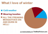 Love, Tumblr, and Winter: What I love of winter  Cold weather  Wearing hoodies  ALL THE FREAKING  MOSQUITOES DIE  AND BURN IN  HELL!  you should probably go to TheMetaPicture.com srsfunny:  It's My Favorite Thing About Winter