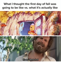 sorry didn't realize i was still in danger of MELTING: What I thought the first day of fall was  going to be like vs. what it's actually like  ts so damn  hot sorry didn't realize i was still in danger of MELTING