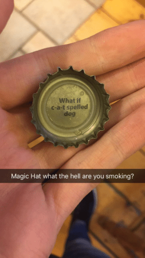 Magic Hat is the best brewery: What if  c-a-t spelled  dog  Magic Hat what the hell are you smoking? Magic Hat is the best brewery