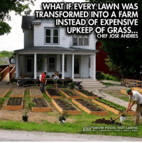 Memes, 🤖, and Grass: WHAT IF EVERY LAWN WAS  TRANSFORMED INTO A FARM  INSTEAD OF EXPENSIVE  UPKEEP OF GRASS.  CHEF JOSE ANDRES.  GROW FOOD NOT LAWNS  ONY GARDENING LIVING NEWS MORE Think about it ...