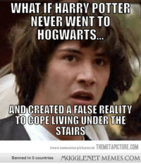 """<p>What if&hellip;&hellip; <a href=""""http://memes.mugglenet.com/Harry+Potter+Funny+Pics/What-if/622"""">http://memes.mugglenet.com/Harry+Potter+Funny+Pics/What-if/622</a></p>: WHAT IF HARRY POTTER  NEVER WENT TO  HOGWARTS  AND CREATED A FALSE REALITY  TO COPE LIVING UNDER THE  STAIRS  more awesome pictures at THEMETAPICTURE.COM  Banned in 0 countries  MUGGLENETMEMES.COM <p>What if&hellip;&hellip; <a href=""""http://memes.mugglenet.com/Harry+Potter+Funny+Pics/What-if/622"""">http://memes.mugglenet.com/Harry+Potter+Funny+Pics/What-if/622</a></p>"""