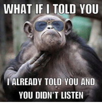 Dank, 🤖, and You: WHAT IF I TOLD YOU  I ALREADY TOLD YOU AND  YOU DIDN'T LISTEN