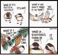Okay, Time, and Source: WHAT IF IT5  ROTTEN  INSIDE?  WHAT IF WE  DON'T MAKE  IT IN TIME? WILL.  ITS NOT,  WE  WHAT IF I  BIRDSTRIeS  EVERYTHINGS IT  15.  IT?  YOU  CAN.  GONNA BE  OKAY source: Birdstrips