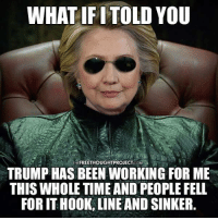 hook line and sinker: WHAT IF ITOLD YOU  THE FREETHOUGHTPROJECTCOM  TRUMP HAS BEEN WORKING FOR ME  THIS WHOLE TIME AND PEOPLE FELL  FOR IT HOOK, LINE AND SINKER.
